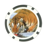 tiger_4 Poker Chip Card Guard (10 pack)