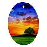 wallpaper_10251 Ornament (Oval)