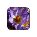 wallpaper_13855 Rubber Square Coaster (4 pack)