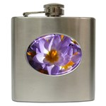wallpaper_13855 Hip Flask (6 oz)