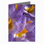 wallpaper_13855 Greeting Cards (Pkg of 8)