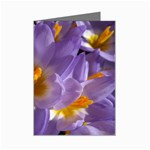 wallpaper_13855 Mini Greeting Cards (Pkg of 8)