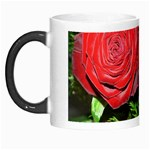 wallpaper_16293 Morph Mug