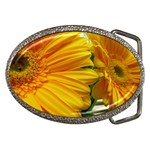 wallpaper_18294 Belt Buckle