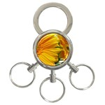 wallpaper_18294 3-Ring Key Chain