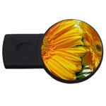 wallpaper_18294 USB Flash Drive Round (2 GB)
