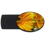 wallpaper_18294 USB Flash Drive Oval (2 GB)