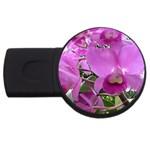 wallpaper_19193 USB Flash Drive Round (4 GB)
