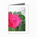 wallpaper_17044 Mini Greeting Card