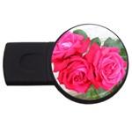wallpaper_17044 USB Flash Drive Round (4 GB)