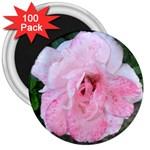 wallpaper_17147 3  Magnet (100 pack)