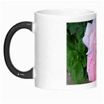 wallpaper_17147 Morph Mug
