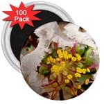 wallpaper_17805 3  Magnet (100 pack)