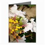 wallpaper_17805 Greeting Cards (Pkg of 8)
