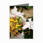 wallpaper_17805 Mini Greeting Cards (Pkg of 8)