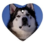 Alaskan Malamute Dog Ornament (Heart)