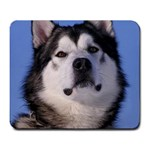 Alaskan Malamute Dog Large Mousepad