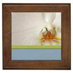 Wedding Orchid Framed Tile