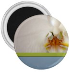 Wedding Orchid 3  Magnet