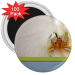 Wedding Orchid 3  Magnet (100 pack)