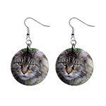 Maine Coon Cat 1  Button Earrings