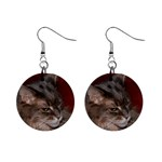 Maine Coon Cat D2 1  Button Earrings