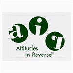 A.I.R. Attitudes In Reverse Glasses Cloth (Large, Two Sides)
