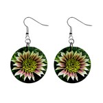 Beautiful Flowers 1  Button Earrings