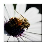 Bee on a Daisy Tile Coaster