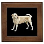 Labrador Retriever Gifts, Dog Merchandise, Custom Dog Gift Ideas, Breed Information & Dog Photos