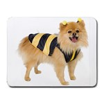 dog-photo Small Mousepad