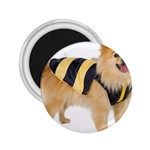 dog-photo 2.25  Magnet