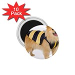 dog-photo 1.75  Magnet (10 pack)