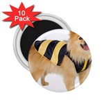 dog-photo 2.25  Magnet (10 pack)