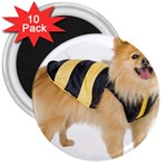 dog-photo 3  Magnet (10 pack)