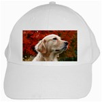 dog-photo cute White Cap