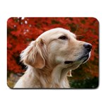 dog-photo cute Small Mousepad
