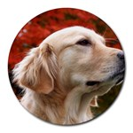 dog-photo cute Round Mousepad
