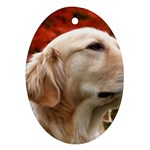dog-photo cute Ornament (Oval)