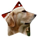 dog-photo cute Ornament (Star)