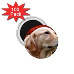 dog-photo cute 1.75  Magnet (100 pack)