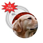 dog-photo cute 2.25  Button (10 pack)