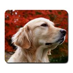 dog-photo cute Large Mousepad