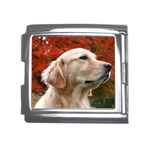 dog-photo cute Mega Link Italian Charm (18mm)