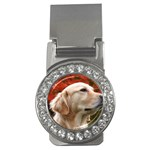 dog-photo cute Money Clip (CZ)