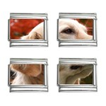dog-photo cute 9mm Italian Charm (4 pack)