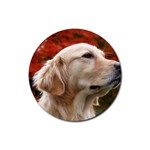 dog-photo cute Rubber Round Coaster (4 pack)