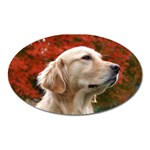dog-photo cute Magnet (Oval)