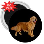 Golden Retriever Dog Gifts BB 3  Magnet (100 pack)