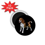 Beagle Dog Gifts BB 1.75  Magnet (10 pack)
